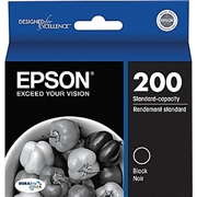Epson T2001 (T200120) OEM Ink Cartridge