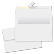 Quality Park Products Quality Park Redi-Strip Specialty Envelope