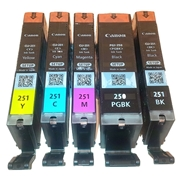Canon PGI-250 / CLI-251 B/C/M/Y Combo Pack SETUP OEM Ink Cartridge