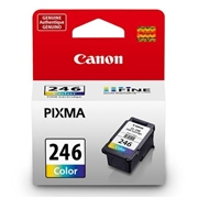 Canon CL-246 OEM Ink Cartridge