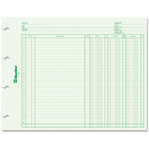 Dominion Blueline, Inc Blueline Bilingual Ledger Book