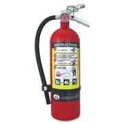 Badger Advantage ADV-550 Fire Extinguisher