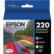 Epson T220120 Multipack OEM Ink Cartridge