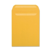 Quality Park Products Quality Park SELF-SEAL Catalog Envelope